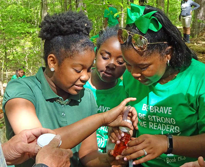 """Three girls are participating in the """"Life Under A Log"""" Program. They are putting the bugs that they have found in a container."""